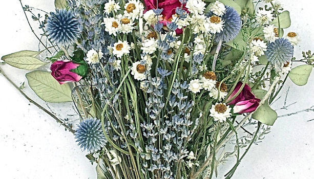 Missoula Floral Design || Upcoming Winter-Floral Workshop Feb 11th