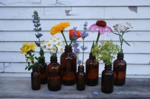 Missoula Medicinal Flowers grown locally in medicine bottles