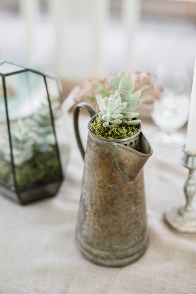 local succulents at a Montana wedding