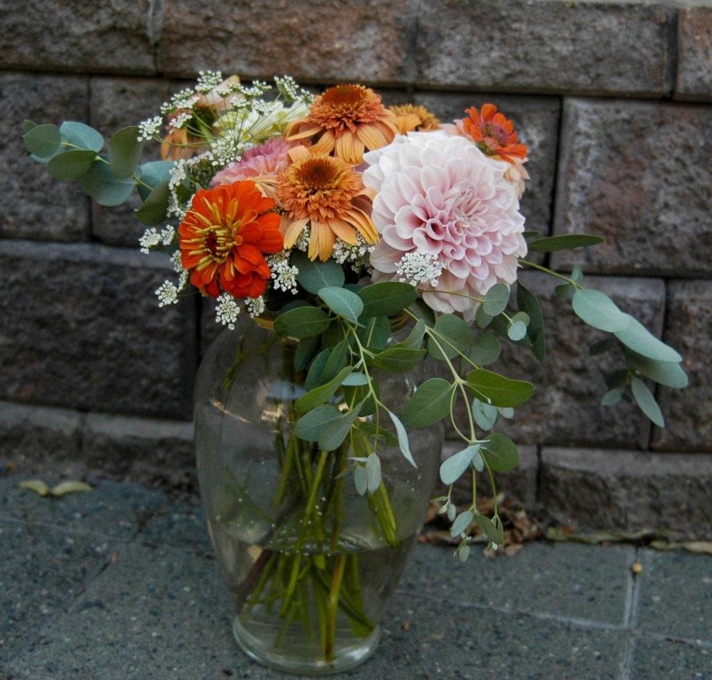echinacea, dahlia, eucalyptus, yarrow, queen anne's lace in vase