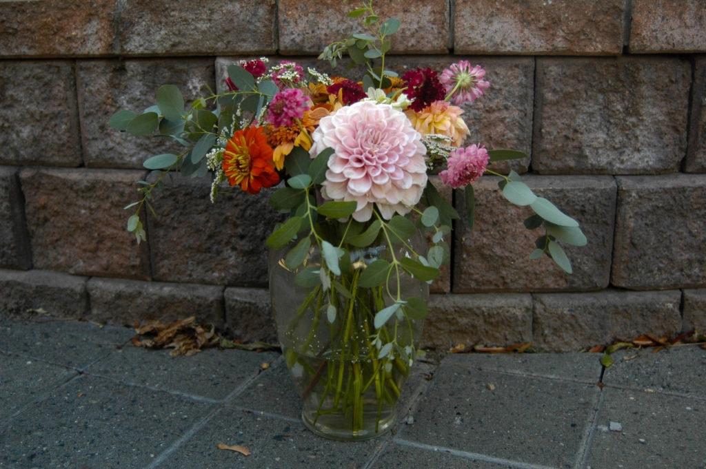echinacea, eucalyptus, yarrow, queen anne's lace, dahlia, scabiosa