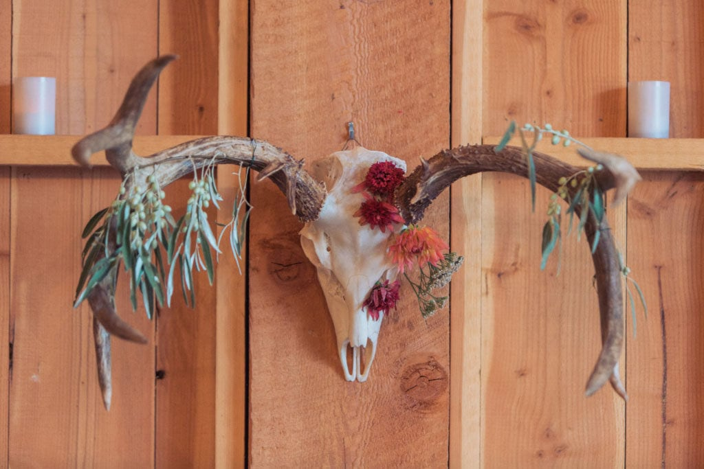 antlers with flowers draping from it