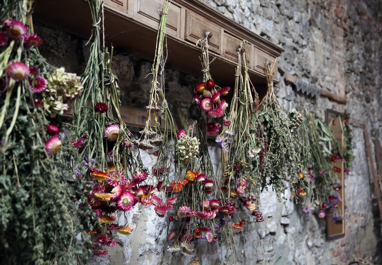 Dried flowers hanging in Montana for valentine bouquets