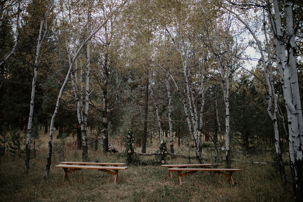 Lubrecht Forest venue staging